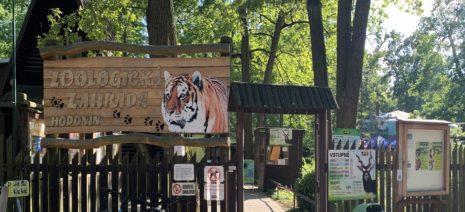 výlet s detmi zoo emamamamu